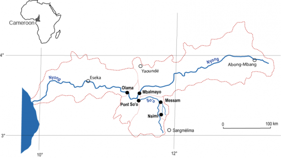 Carte du bassin amont du Nyong