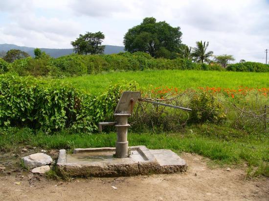 Figure 6. Hand pump well (sampling site M6)